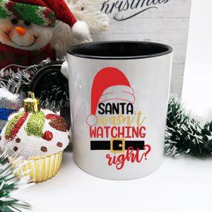cana-craciun-santa-wasnt-watching-right