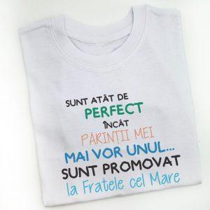 tricou-copii-perfect-fratele-cel-mare-2