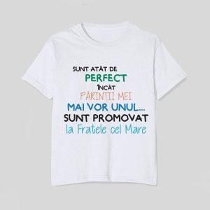 tricou-copii-perfect-fratele-cel-mare
