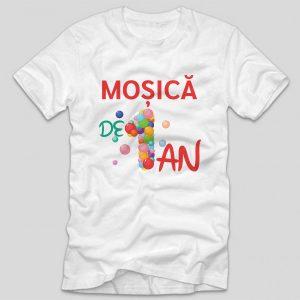 mosica-de-1-an